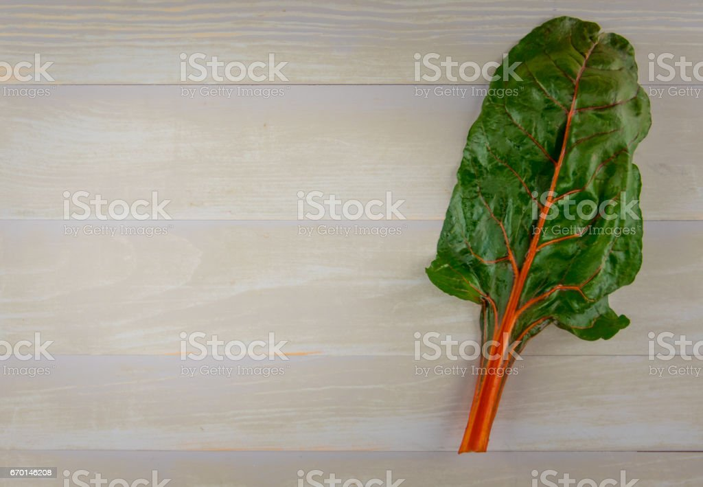 Orange Leaf of Rainbow Chard with Copy Space stock photo