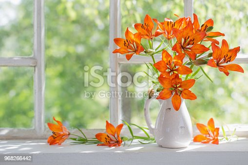 orange lily on windowsill