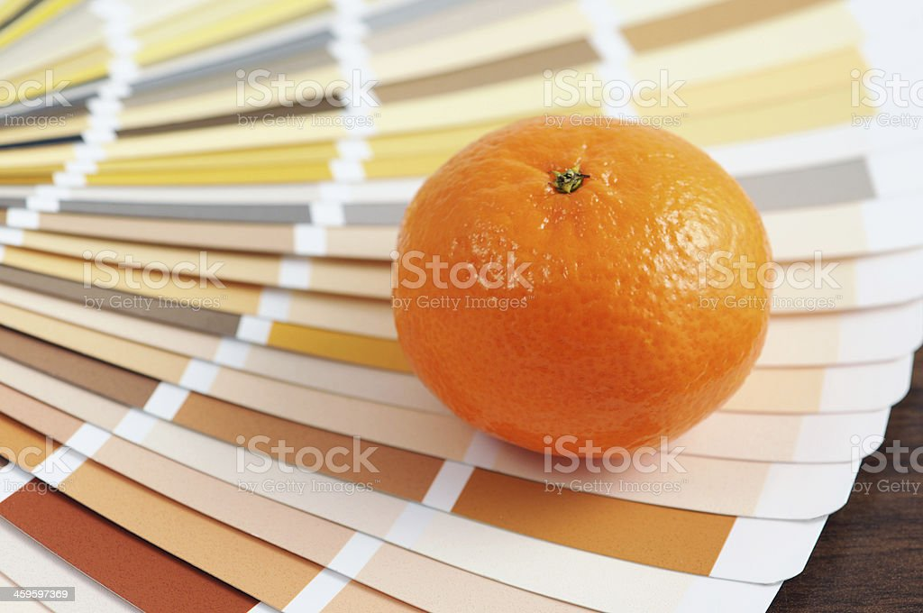Orange on color Swatch home improvement painting stock photo