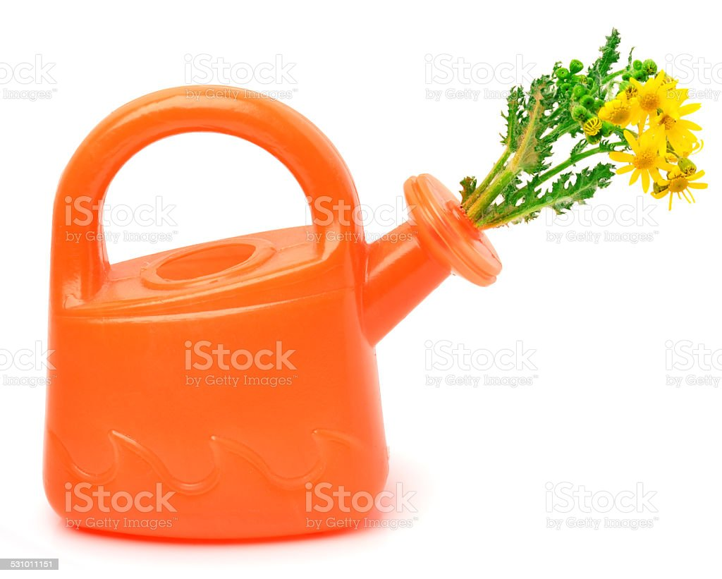 Orange plastic watering can with flowers stock photo