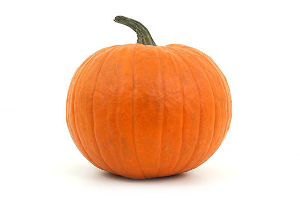 orange pumpkin on white background for halloween or thanksgiving big pumpkin in studio on white background for halloween or thanksgiving pumpkin stock pictures, royalty-free photos & images