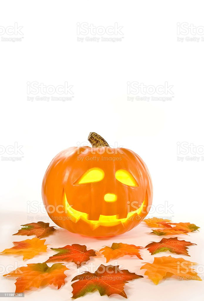 Orange Pumpkin with Leaves Isolated on White royalty-free stock photo