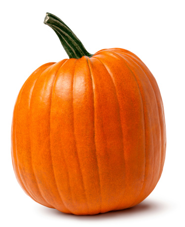 An idyllic orange pumpkin isolated on white with shadow - clipping path included