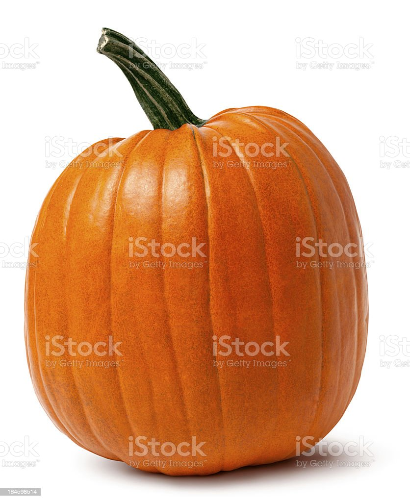 Orange Pumpkin with Twisted Stem Isolated Clipping Path stock photo