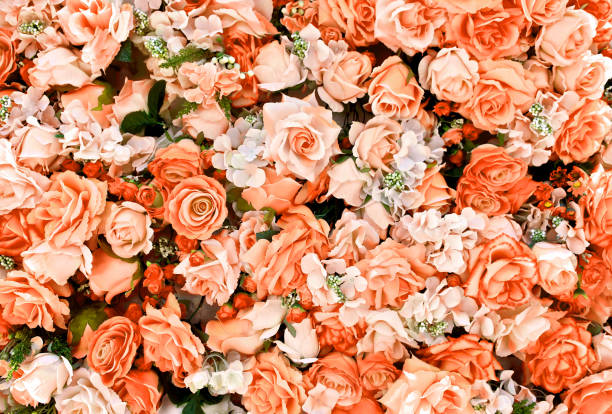 Orange rose flowers bouquet background for valentines day decoration picture id970114808?b=1&k=6&m=970114808&s=612x612&w=0&h=vldtwjyoj4p8xa0zy0gll5gsndk3x1wi9l0b0ne7yhy=