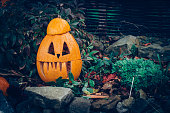 carved smiling halloween pumpkin on rocky background