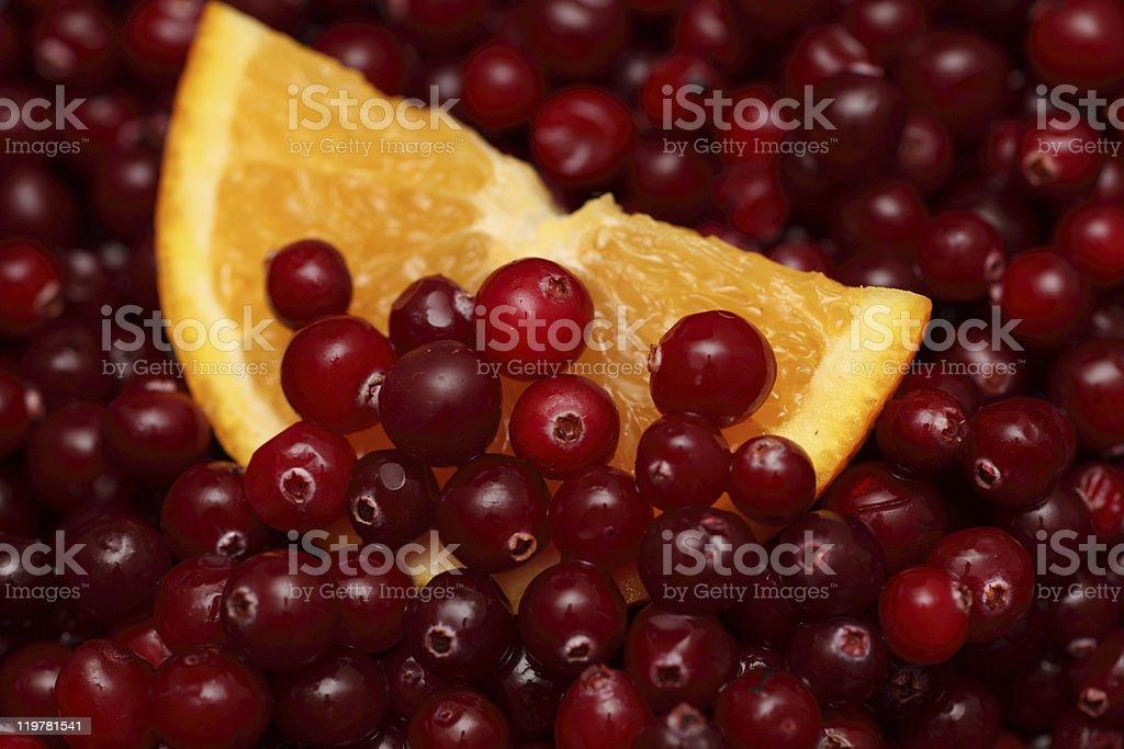 Orange slice in cranberries royalty-free stock photo