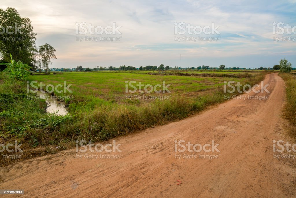 Orange soil road with field of agricultural in countryside stock photo