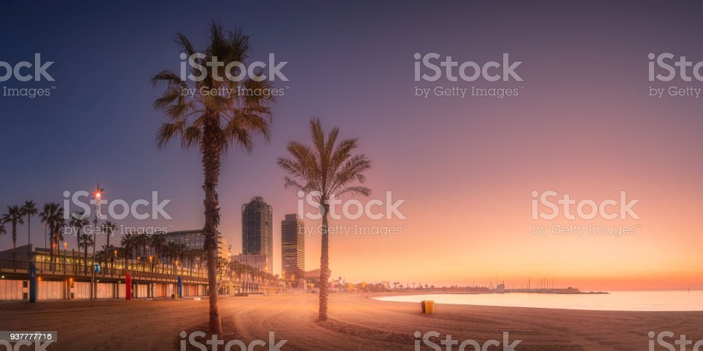 Naranja sunrset en playa de Barcelona con la palma - foto de stock
