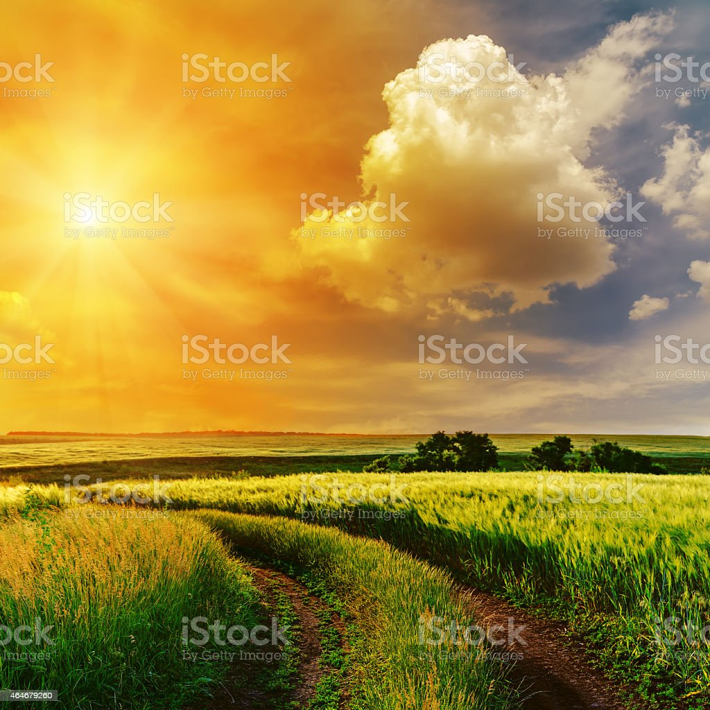 orange sunset in dramatic sky over road in green grass stock photo
