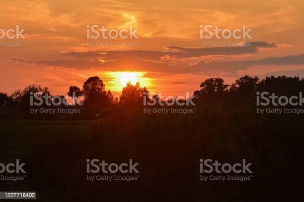 Photo of orange sunset over forest park, orange sky