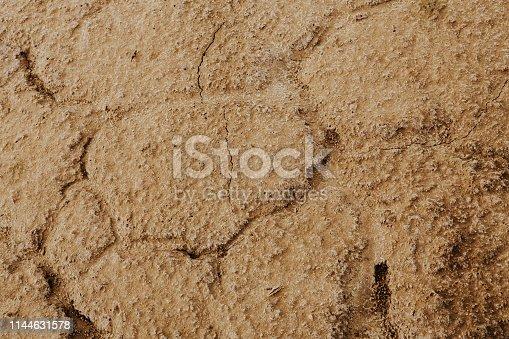 700531402 istock photo Orange texture of crack clay 1144631578