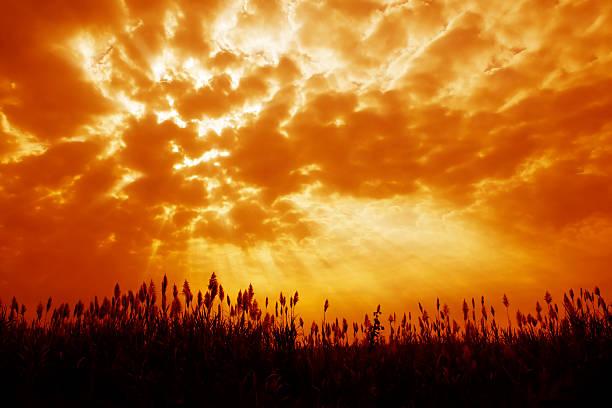Orange tinted sky illustrating Armageddon stock photo