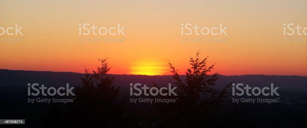 Orange Tree Framed Sunset stock photo