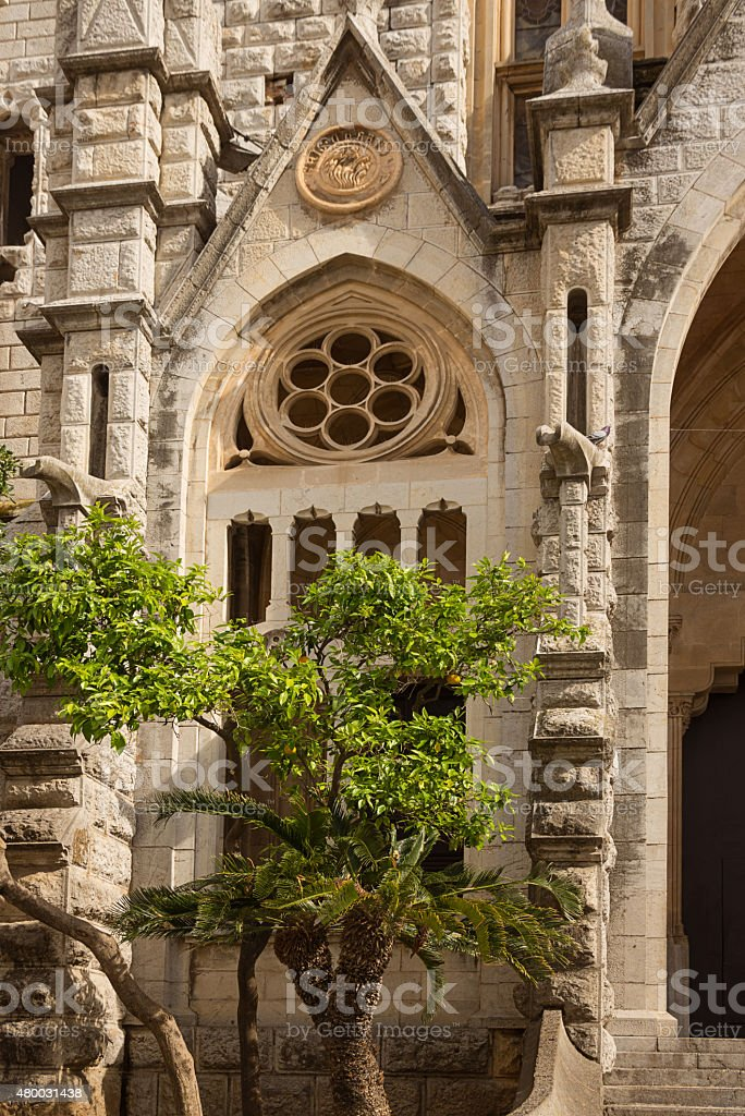 Orange trees in front of the Gothic Cathedral stock photo