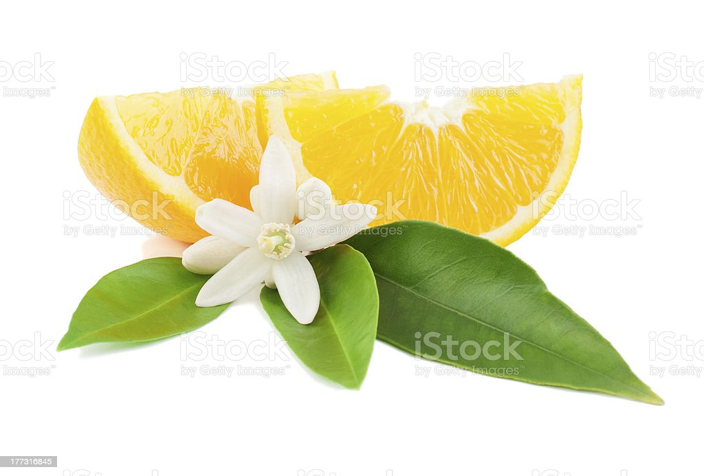 Orange with a flower and leaves stock photo