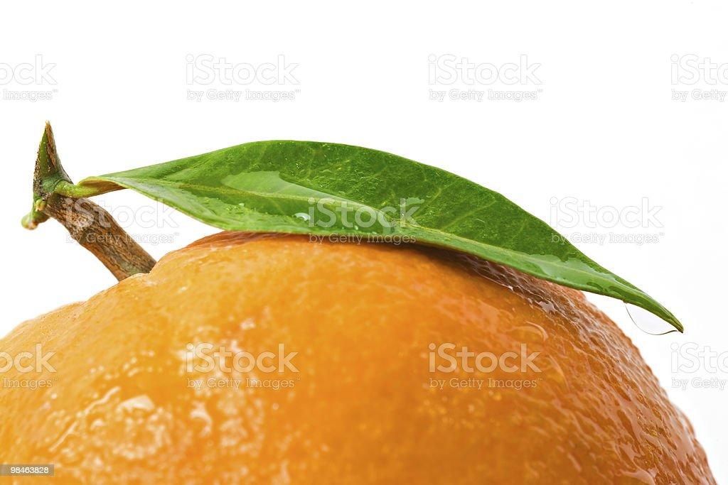 Orange with leaf royalty-free stock photo