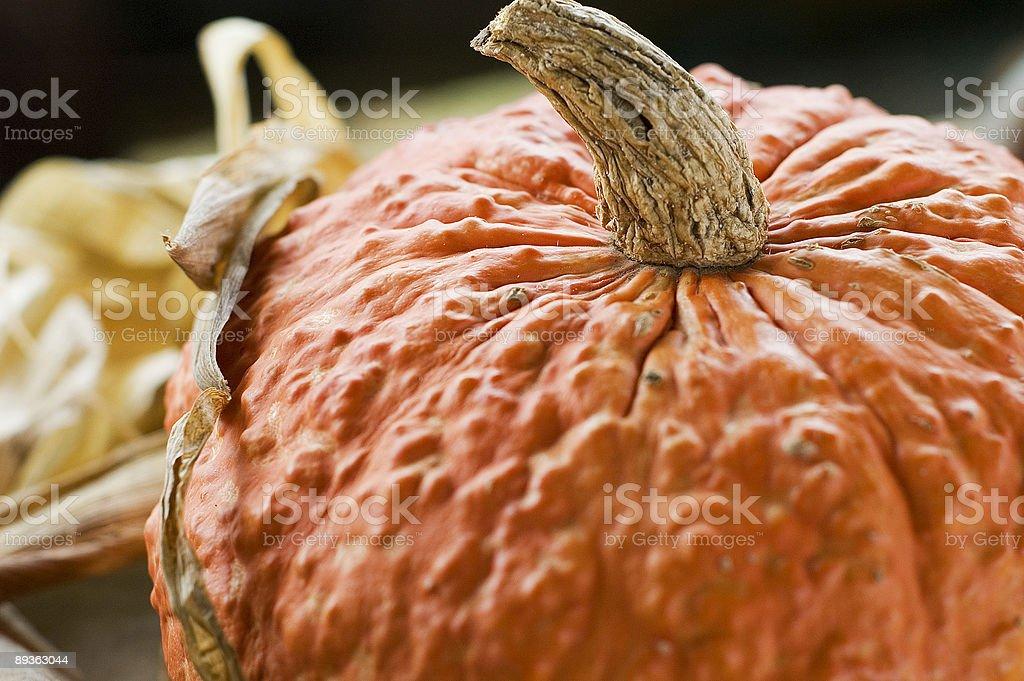 orange wrinkly pumpkin royalty-free stock photo