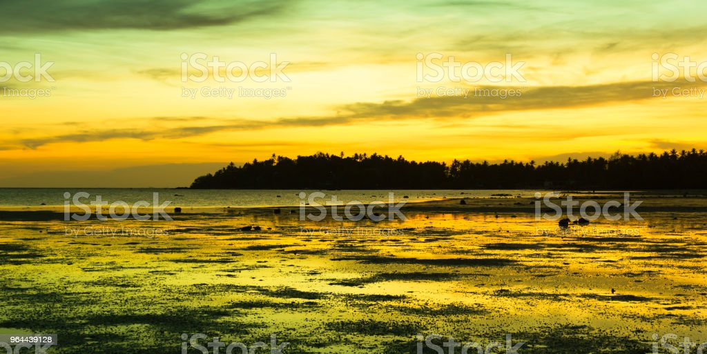 Orange, yellow colors of the sky reflect on shallow water in low tide - Royalty-free Beach Stock Photo