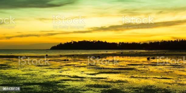 Foto de Laranja Amarelo As Cores Do Céu Refletem Em Águas Rasas Na Maré Baixa e mais fotos de stock de Beleza