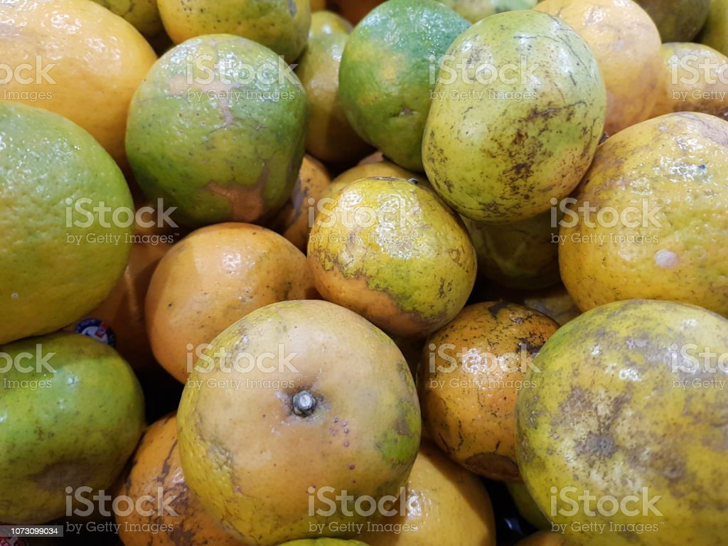 Oranges Is Beneficial To The Body Have Vitamin C And Beta Carotene Calcium Potassium Stock Photo Download Image Now Istock