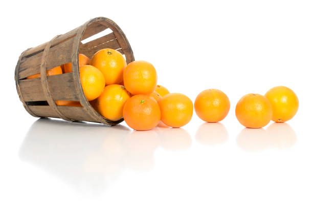 Oranges Spill Out of a Rustic Produce Basket stock photo
