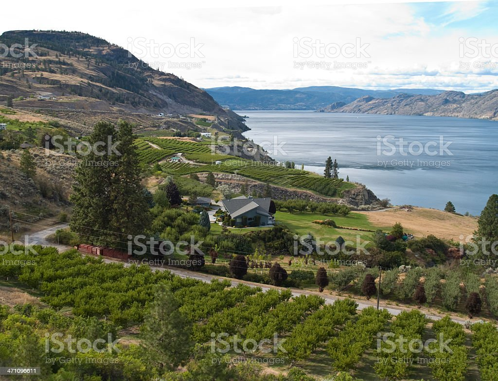 orchard hills and lake royalty-free stock photo