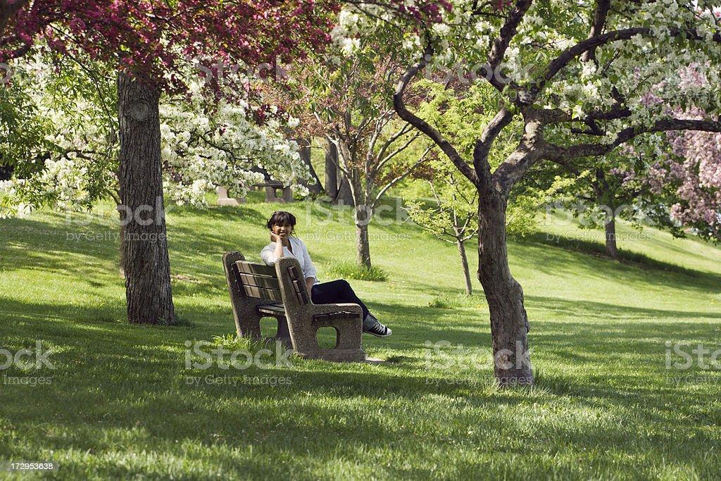 Orchard Morning royalty-free stock photo