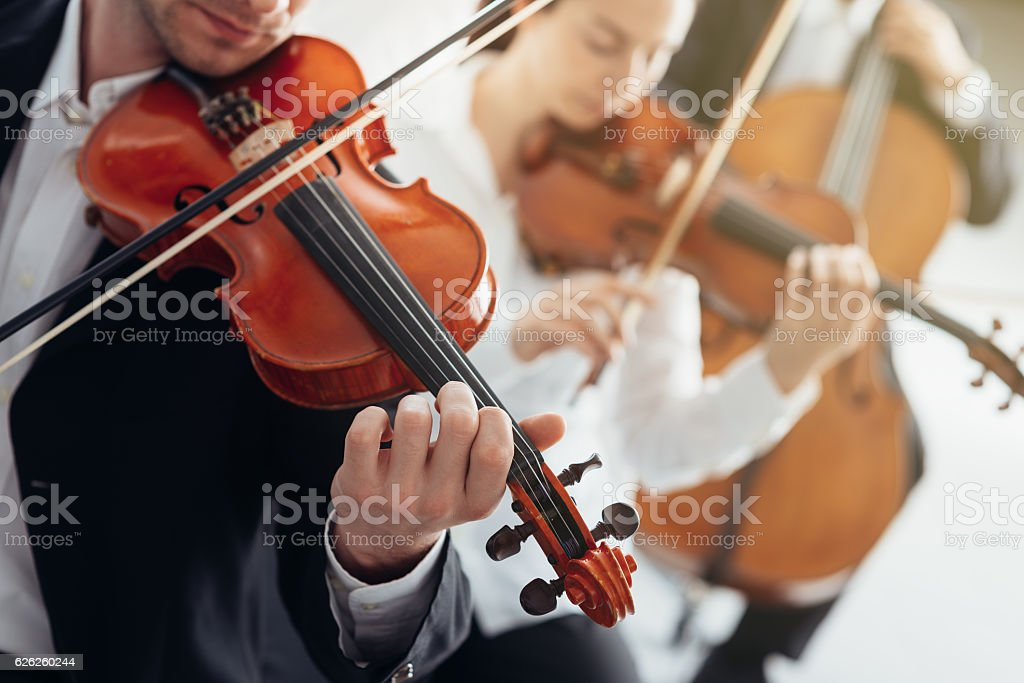 Orchestra string section performing stock photo