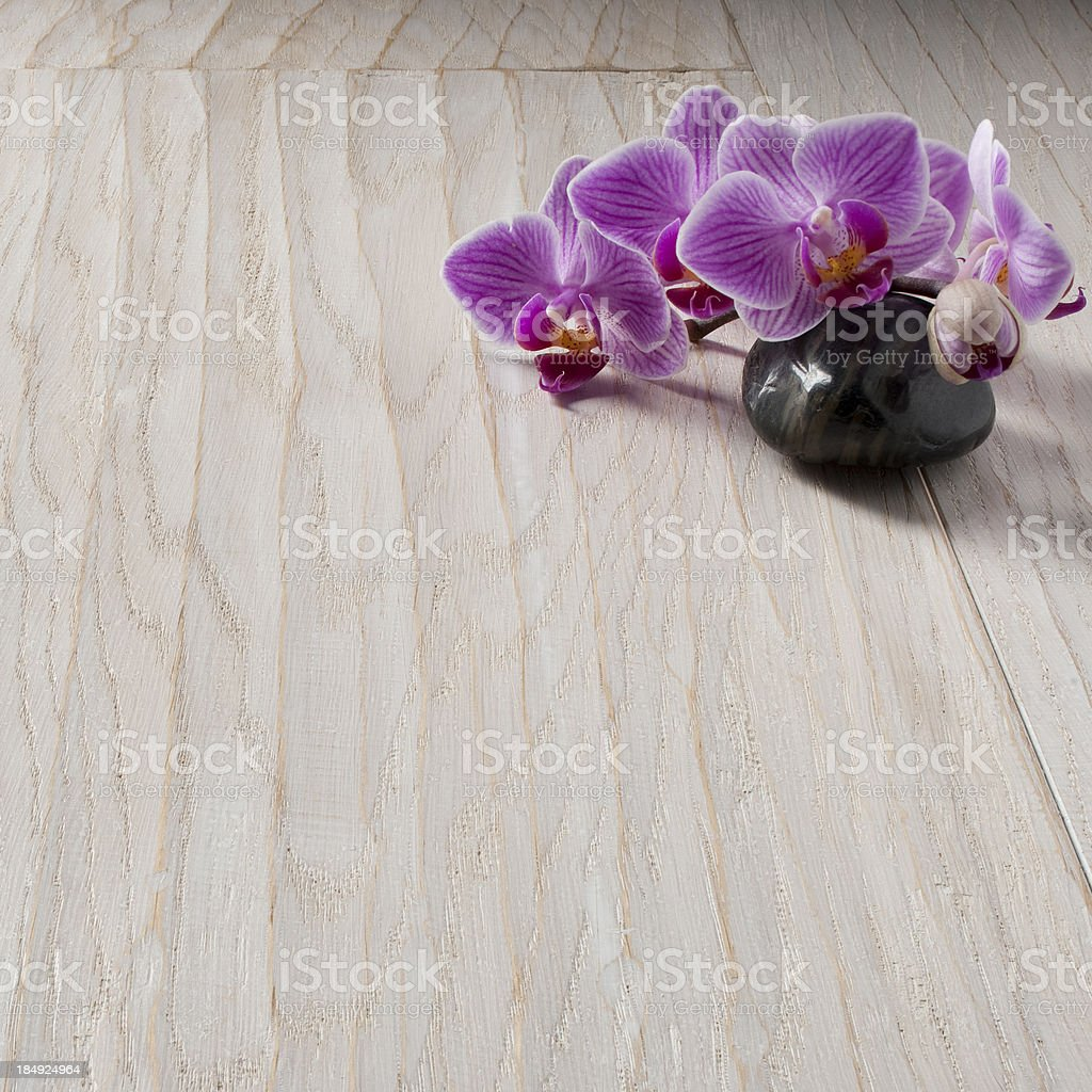 orchid and spa royalty-free stock photo