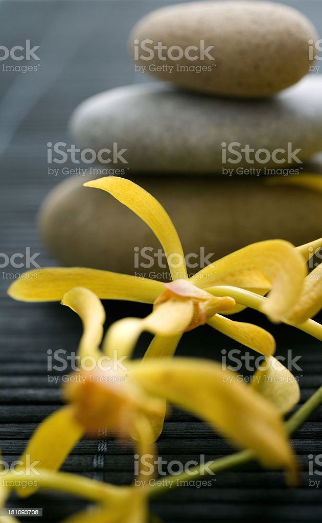 Orchid and stones royalty-free stock photo