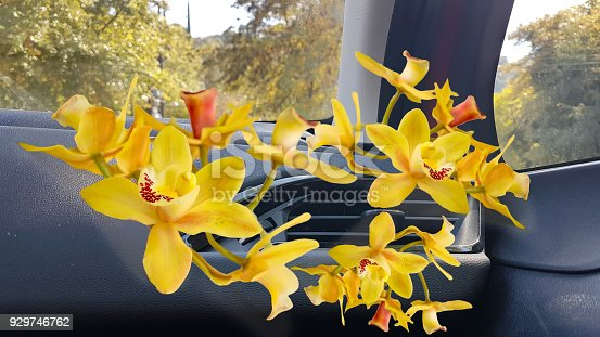 970100874 istock photo orchid car air conductors aircondition road travel background 929746762