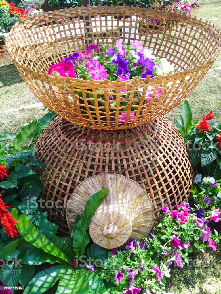 Orchid decoration basket royalty-free stock photo