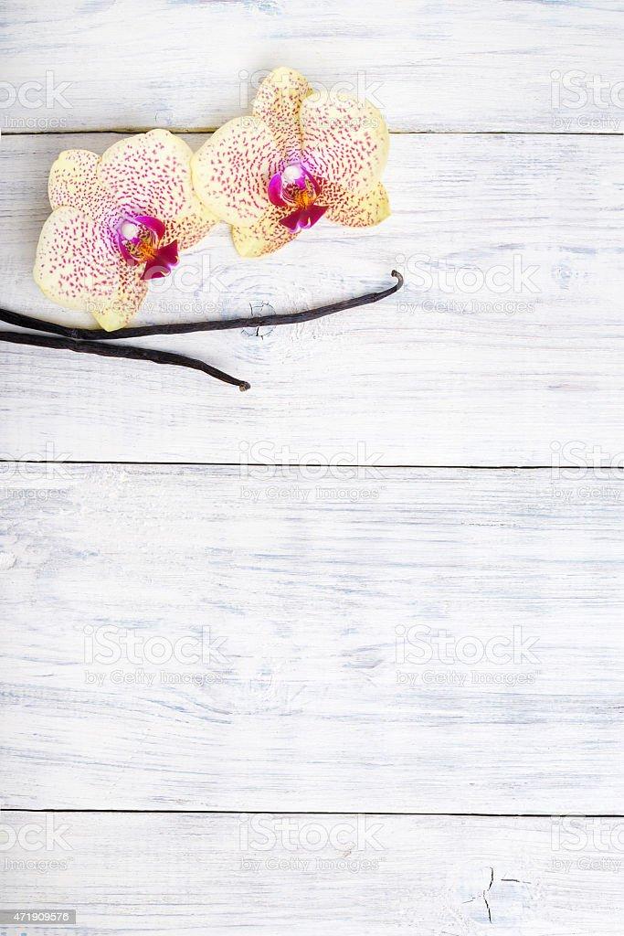 Fleurs Dorchidee Avec Des Gousses De Vanille Sur Fond En Bois Espace