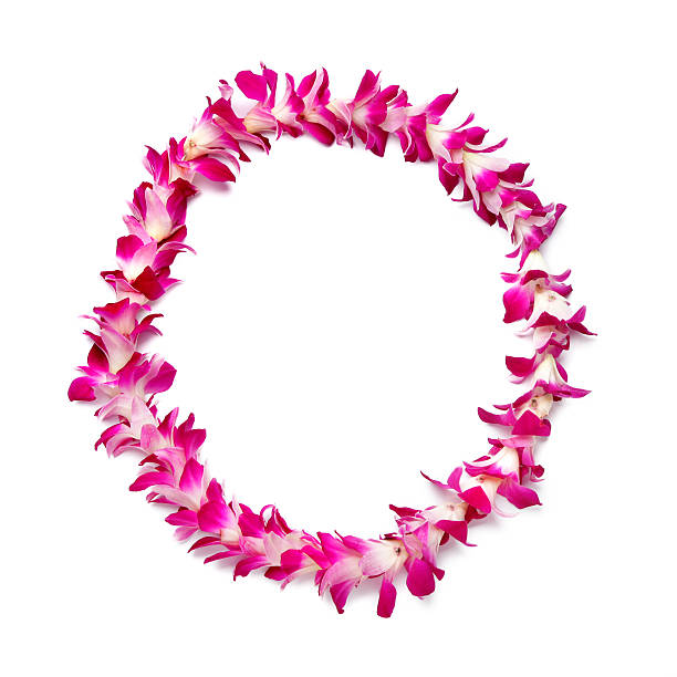 orchid hawaiian lei stock photo