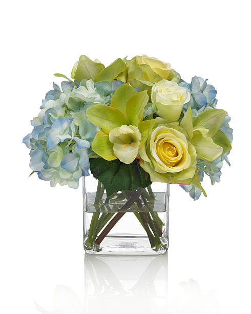 Orchid hydrangea and rose bouquet on white background picture id185327533?b=1&k=6&m=185327533&s=612x612&w=0&h=u4fqt3tnfdgonyipgmr6bkz4vyadvhc1wisgvibwmim=