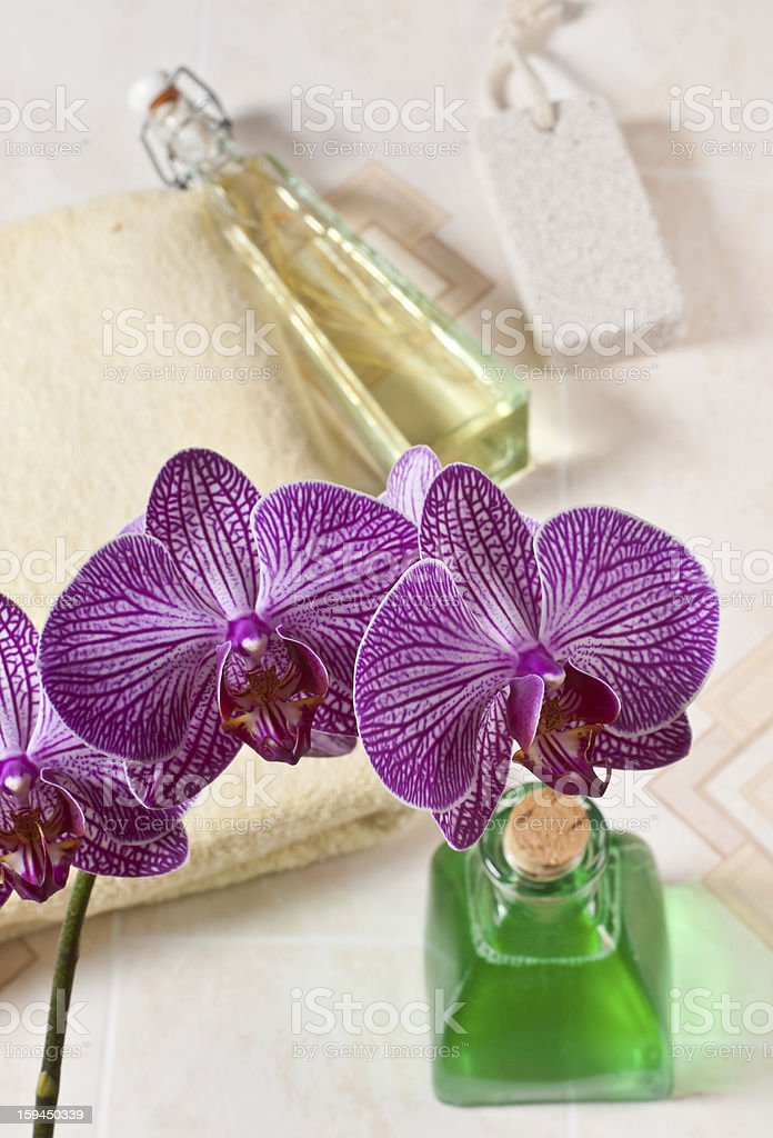 orchid in the bathroom royalty-free stock photo