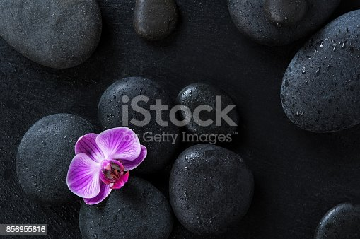 istock Orchid on black spa stones 856955616