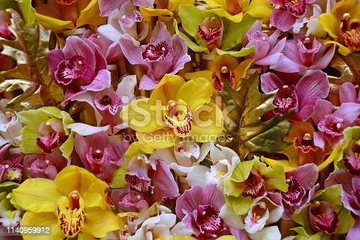 orchid composition: large group of blooming orchid flowerheads in een full frame composition.