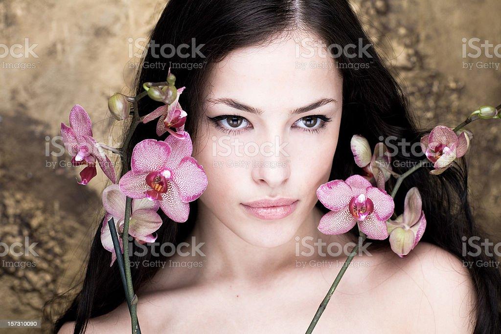Orchid portrait stock photo
