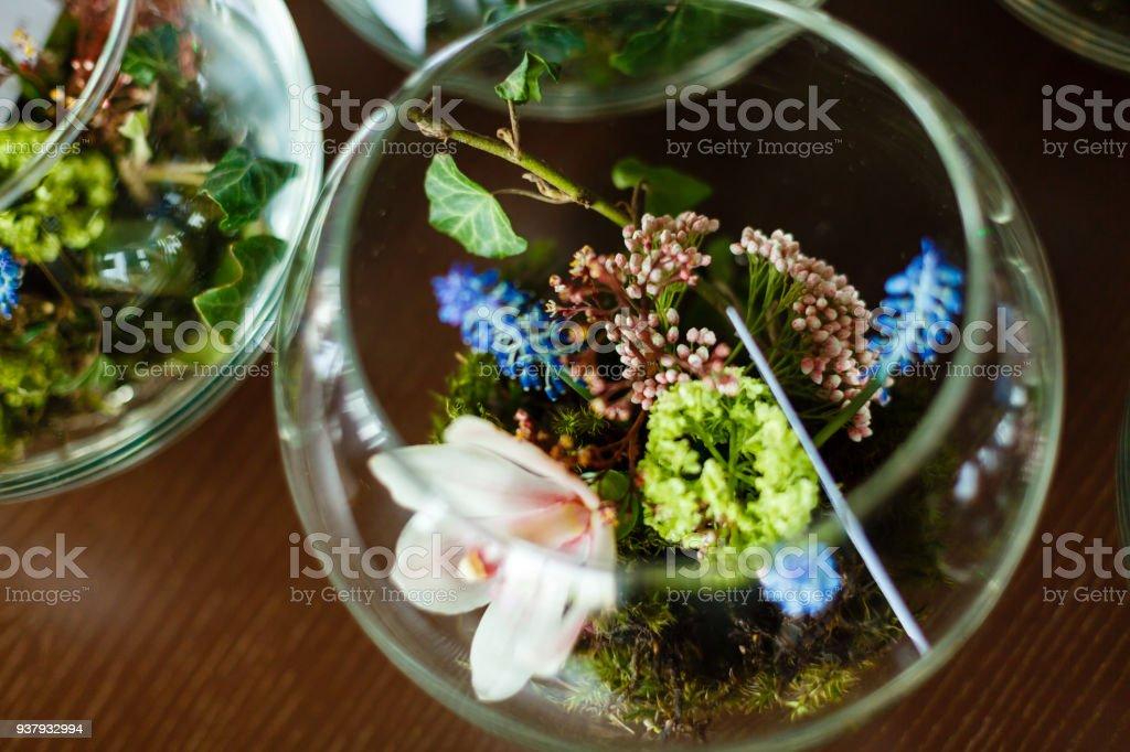 Orchideen Terrarium Glas Glas Dekorative Karte Blume Anordnung