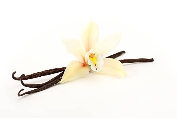 orchidée et vanille - vanille photos et images de collection