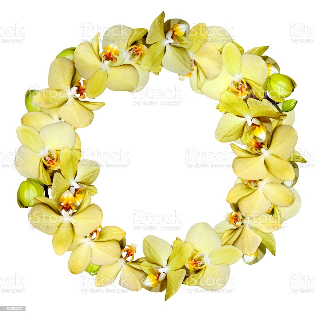 Orchid yellow wreath stock photo