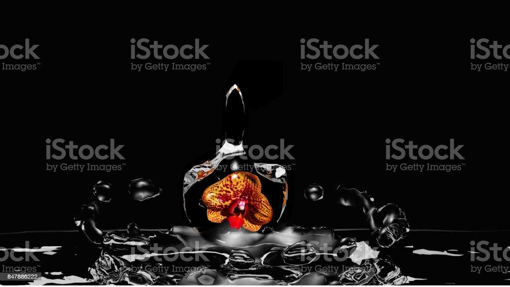 Orchidee in Einem Wassertropfen Fällt ins Wasser – Foto