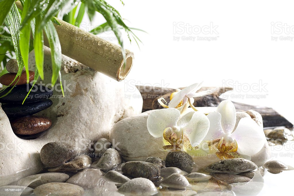 Orchids and zen stones on water spa concept royalty-free stock photo