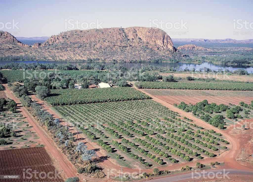 Ord river Farming royalty-free stock photo