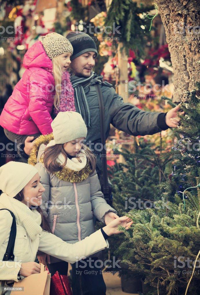 Ordinário família comprando árvore do ano novo - foto de acervo