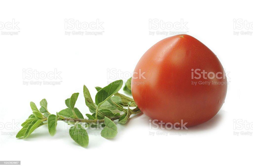 oregano and tomato royalty-free stock photo