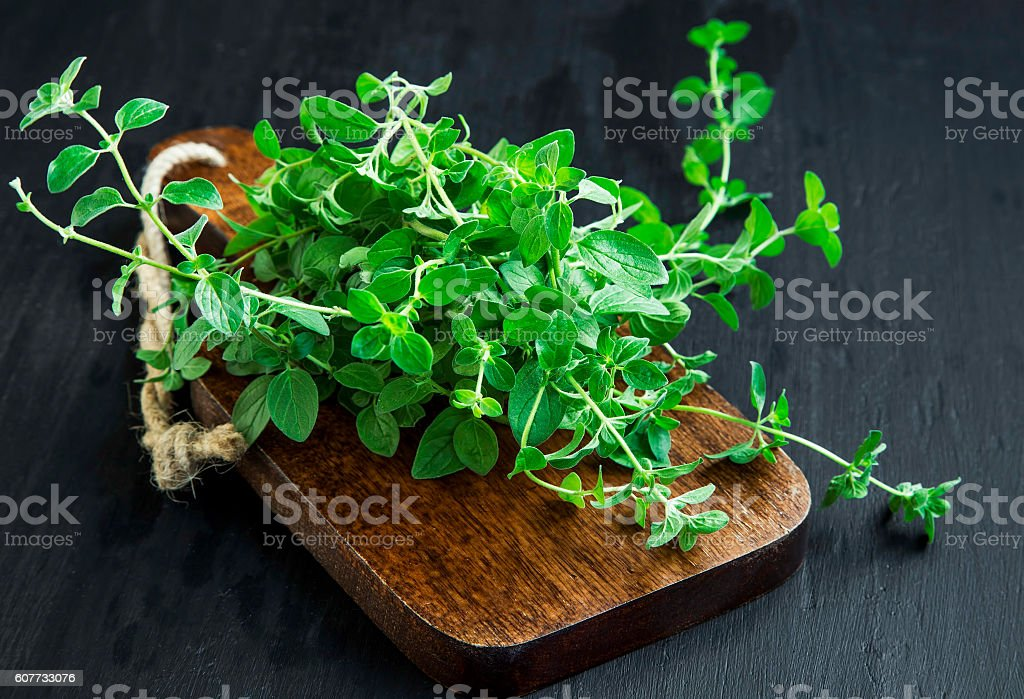 Oregano aromatic herb bunch on wooden board stock photo