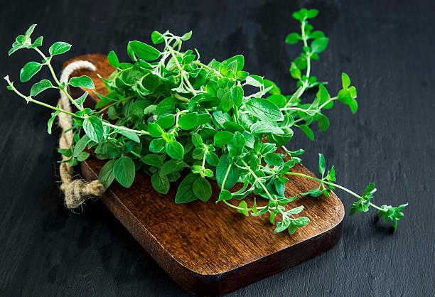 oregano aromatic herb bunch on wooden board - orégano fotografías e imágenes de stock